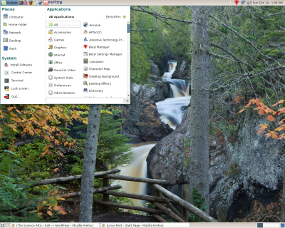 linuxmint_ss2.png